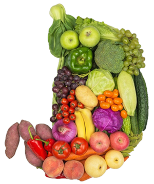 Stomach filled with fruit and vegetables
